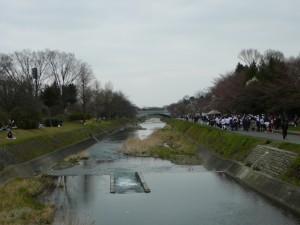 武蔵陵マラソン①