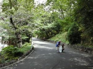 鳩山会館②